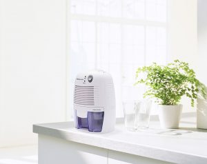 The Pro Breeze is one of the best mini dehumidifiers available.